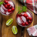 cranberry fennel margaritas