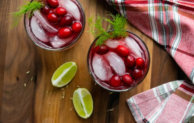 cranberry fennel margaritas